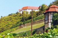 Saale-Unstrut - Land aus Wein und Stein